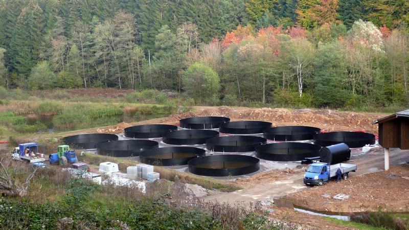 bassin pisiculture Ø 9M